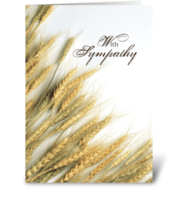 Resurrection Sympathy greeting card