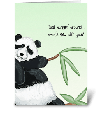 Panda Hello greeting card