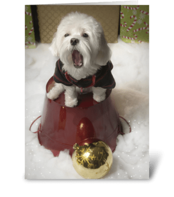 Bored Dog - Holidays greeting card