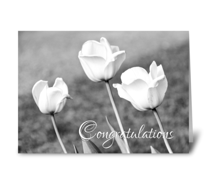 Engagement Congratulations White Tulips greeting card