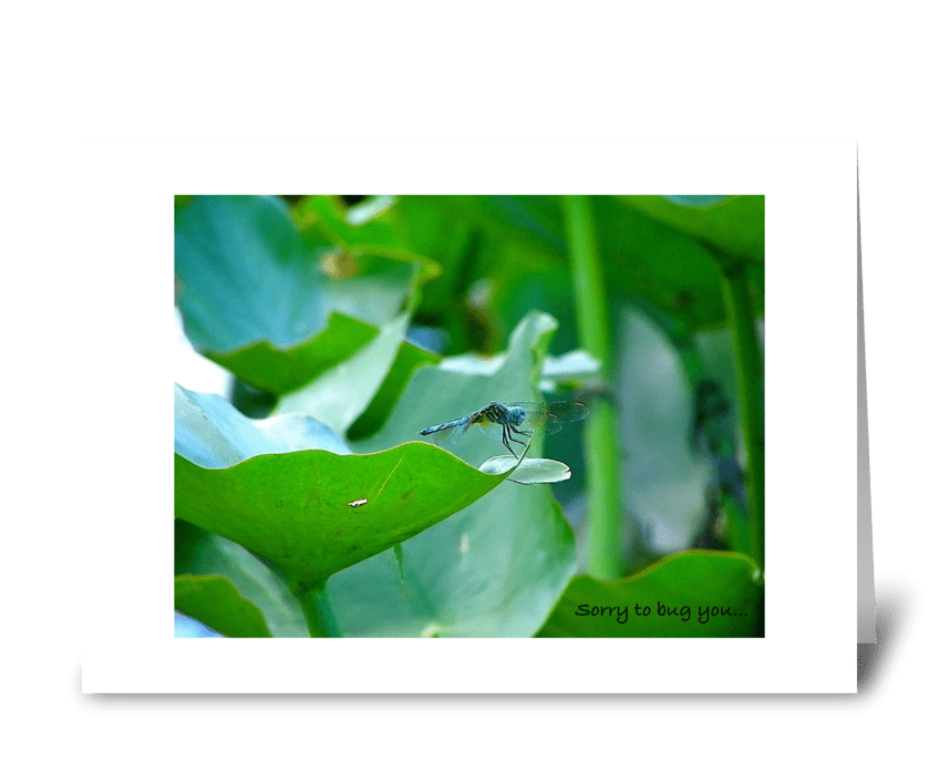 Sorry to bug you again... greeting card