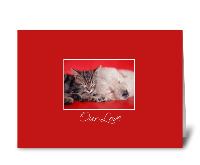 Our Love, Cat & Dog greeting card
