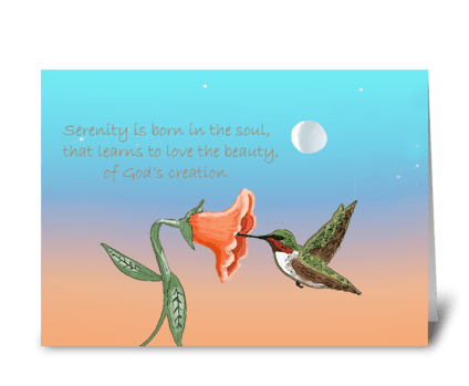 Hummingbird at dusk greeting card