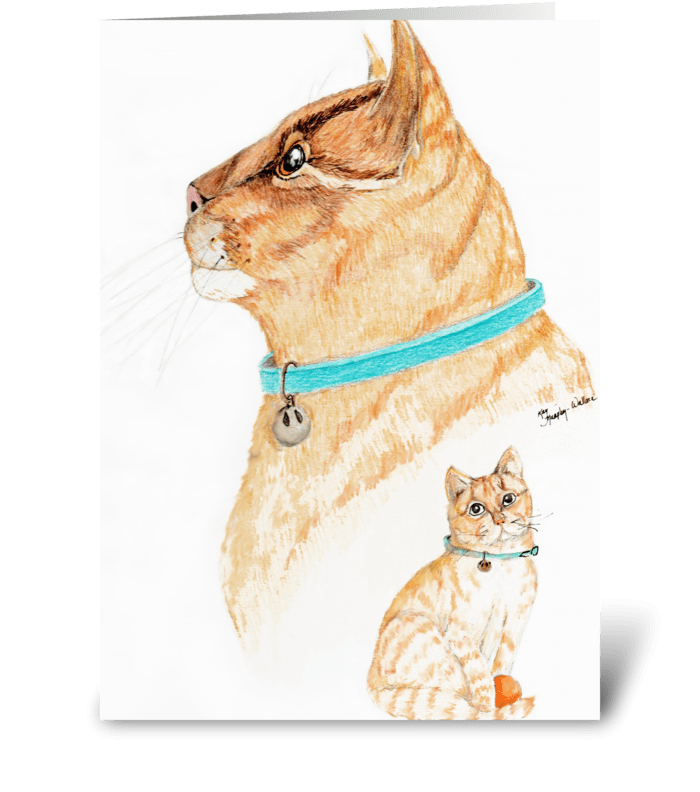 From a kitten to cat greeting card
