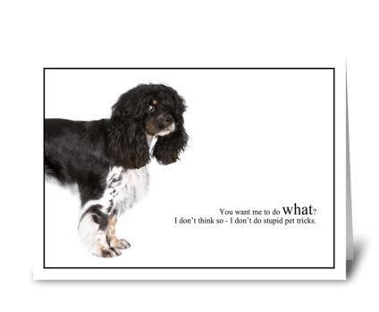 Stupid Pet Tricks greeting card