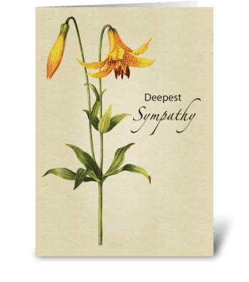 Lily Botanical Sympathy greeting card