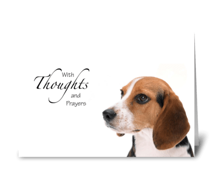 Dog thoughts and prayers greeting card