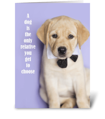 Yellow Lab Funny Relative Card greeting card