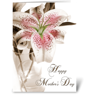 Mother's Day Stargazer Lily greeting card