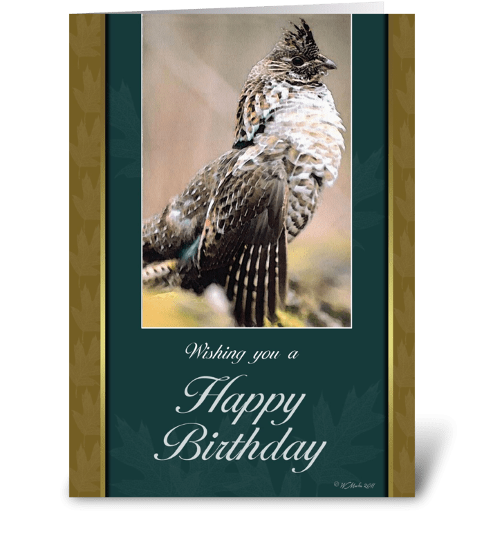 Grouse Birthday Card greeting card