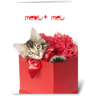 Meow + Mew = Purrfect Love Kitten greeting card