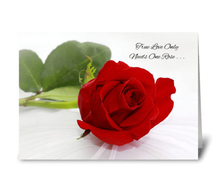 Romantic Red Rose I Love You greeting card