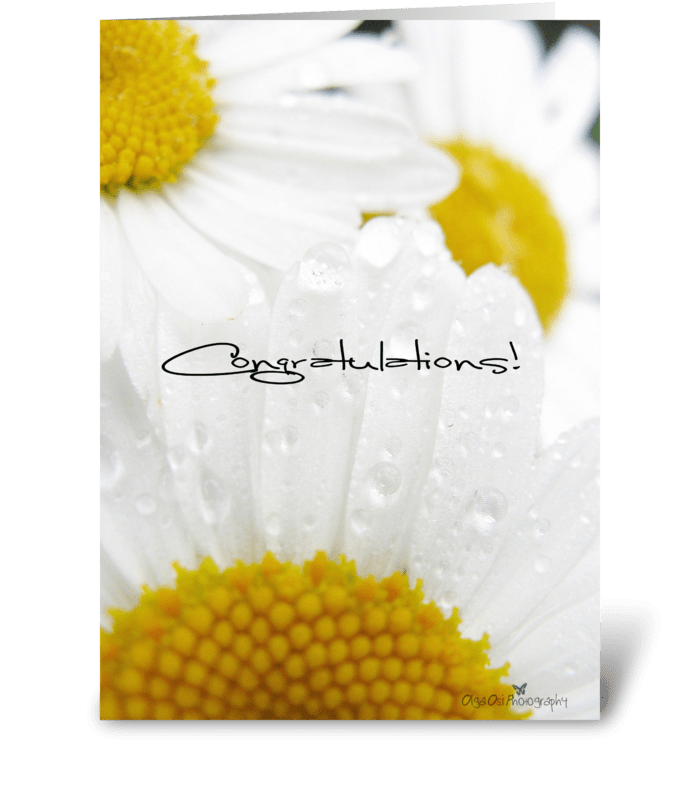 Congratulations with daisies greeting card
