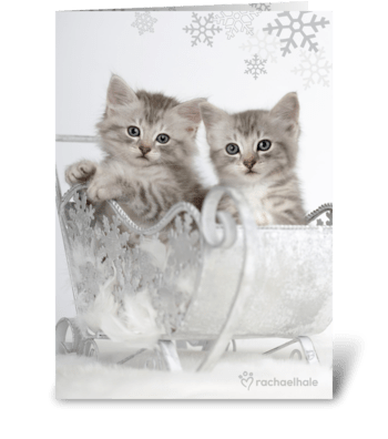 Hope Santa Delivers Your Every Wish This greeting card