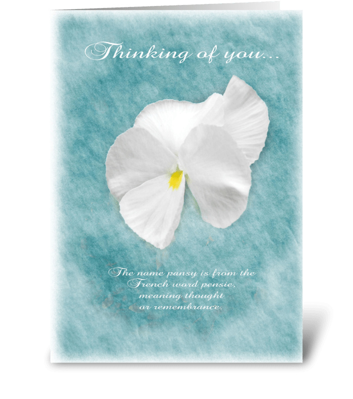Thinking of you Pansy greeting card