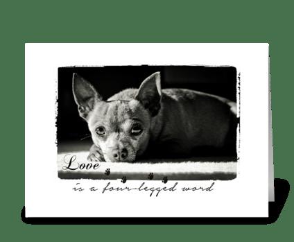 cute dog greetings greeting card