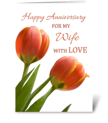 Happy Anniversary for Wife greeting card