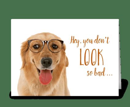 Happy Birthday Old Dog greeting card