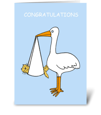 Congratulations new pet cat or kitten. greeting card