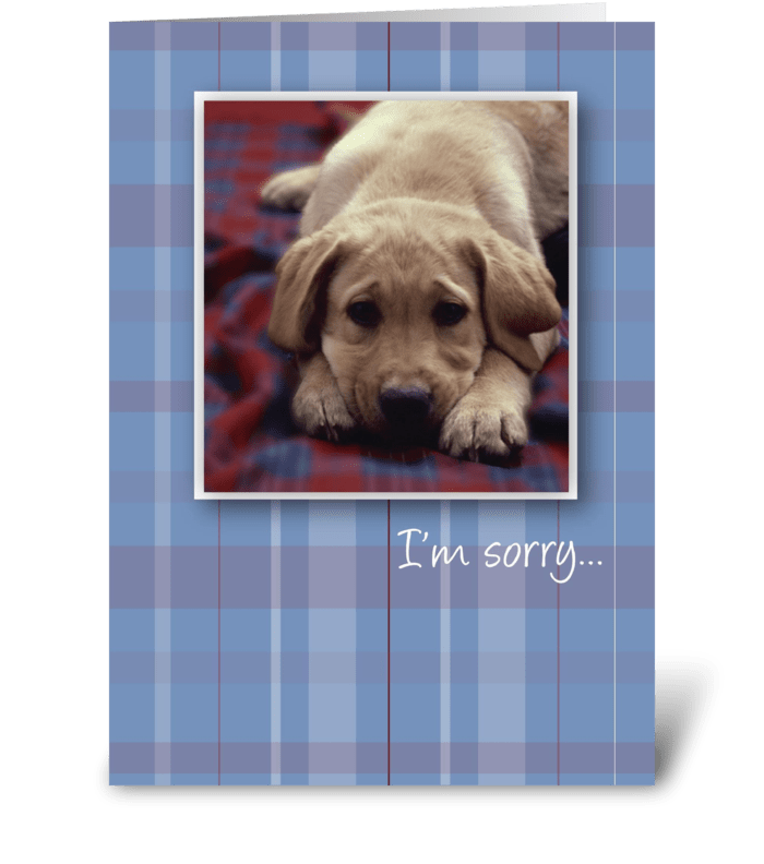 3756 im sorry puppy send this greeting card designed by sandra 3756 im sorry puppy greeting card voltagebd Images