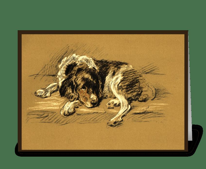Sad, Dog Sympathy greeting card