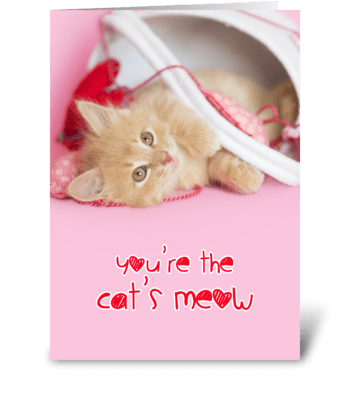 You're the Cat's Meow greeting card