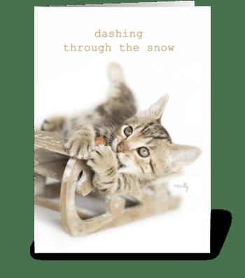 Dashing Through the Snow Christmas Kitty greeting card