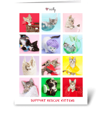 LuvKelly Supports Rescue Kittens greeting card