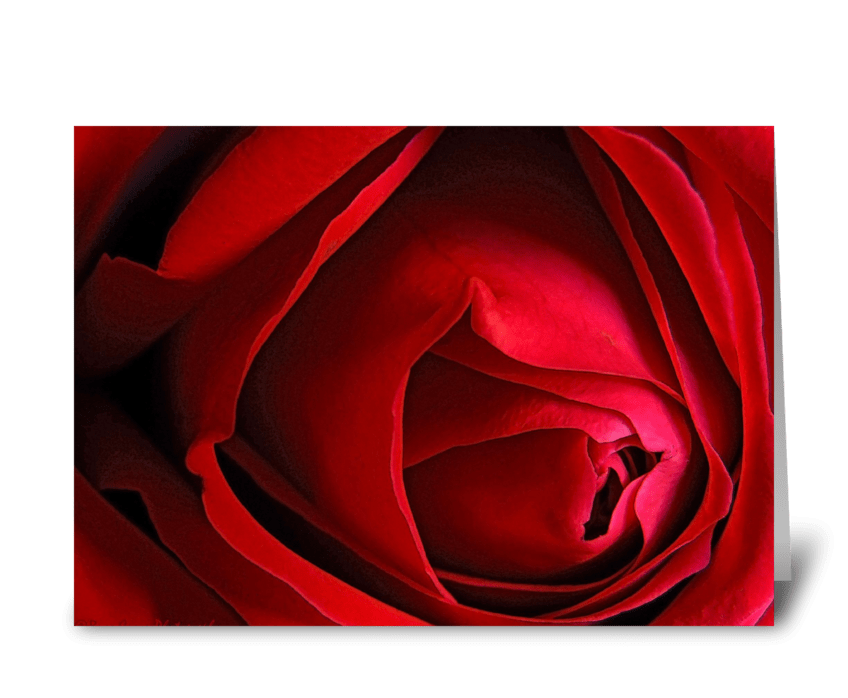 """Red Rose """"I miss you."""" greeting card"""