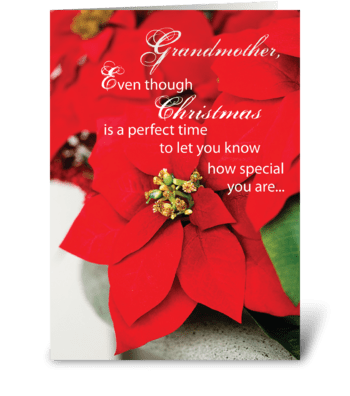 Christmas Grandmother Poinsettia greeting card
